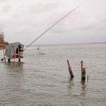 «Рыбачьте с нами» — Ловля маховой удочкой в дельте Волги
